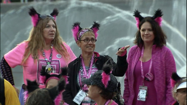 Breast cancer 3 day walk seattle