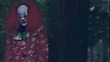 This creepy picture of a clown in the woods was falsely reported to have been taken near a North Carolina high school, police said.