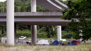 Can a council petition influence the Seattle homeless crisis?