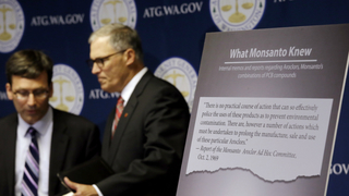 Washington state suing Monsanto over PCB pollution