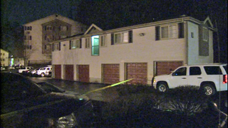 Woman stabbed to death at Mill Creek apartments
