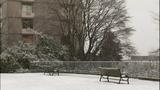 PHOTOS: Late Feb. snow falls around the Sound - (46/73)