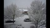 PHOTOS: Late Feb. snow falls around the Sound - (13/73)