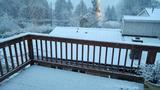 PHOTOS: Late Feb. snow falls around the Sound - (53/73)