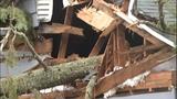 PHOTOS: Trees fall amid high winds - (13/14)