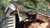 PHOTOS: Trees fall amid high winds - (8/14)