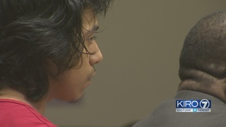 15-year-old pleads not guilty to murdering Des Moines man