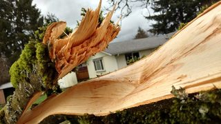 Weak tornado touches down in Vancouver, WA