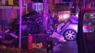 PHOTOS: Firefighters cut 2 people out of car after crash into tree