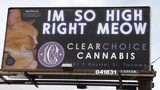 This billboard for Tacoma's Clear Choice Cannabis is an example of one lawmakers say they want to avoid. The store owner says he didn't intend the ad to appeal to kids and is taking it down. Courtesy photo Washington Legislature