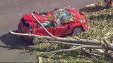 VIDEO: WSDOT says high winds snapped I-5 tree