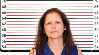 Prosecutor: Northwest woman with 42 cats in car knew animals were sick
