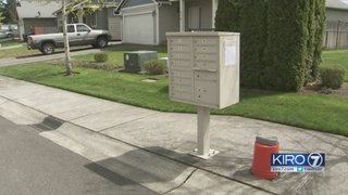 Entire mailbox stolen from Spanaway neighborhood