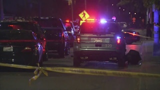 UPDATE: Man killed at Alki Beach identified