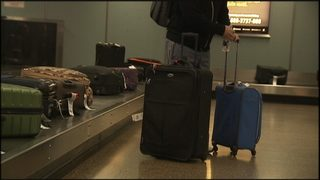 Seattle man arrested in string of airport baggage thefts