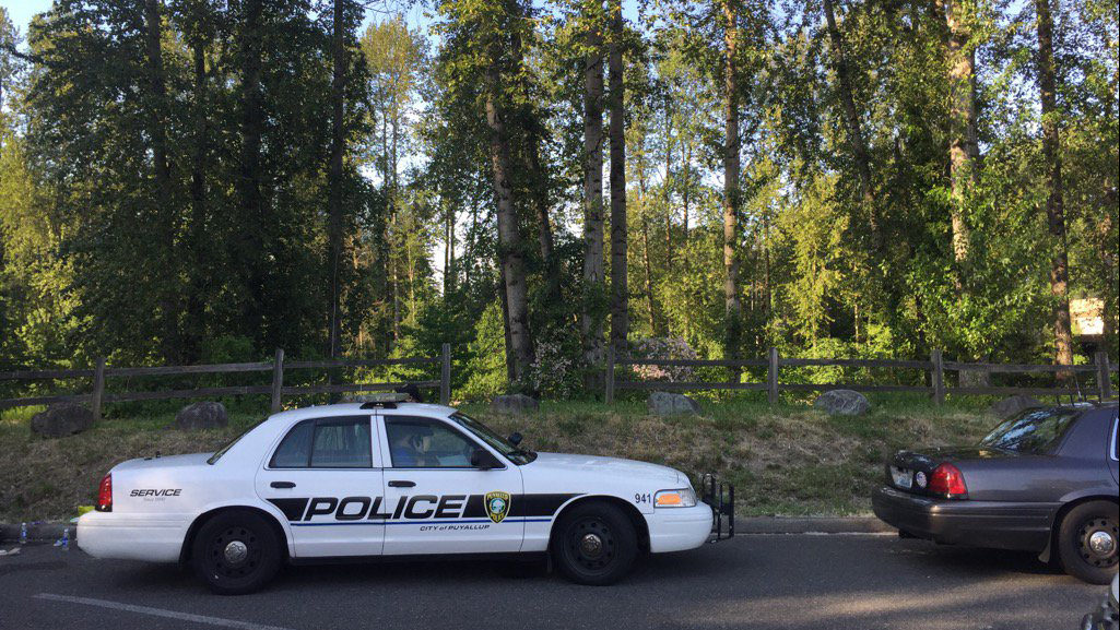 Crews resume search for man who fell into Puyallup River