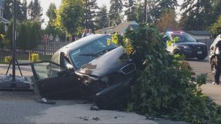Everett man tackles driver who tried running away after almost hitting kids