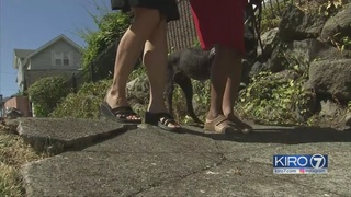 Blind woman asks city to fix sidewalks in Madrona