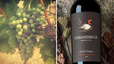 """""""The worst time for smoke taint is the middle of August when the grapes turn from green to red and are the most vulnerable,"""" Canvasback winemaker Brian Rudin said. """"We're outside that window – and we have a really good looking crop this year."""""""