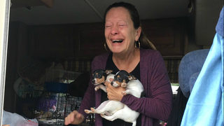 Joyful owner reunited with dogs after stolen RV recovered