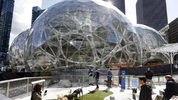 Amazon employees tend to their dogs in a canine play area adjacent to where construction continues on three large, glass-covered domes as part of an expansion of the Amazon.com campus, April 27, 2017, in downtown Seattle. (AP Photo/Elaine Thompson)