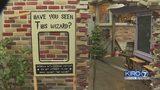 VIDEO: Ballard Diagon Alley