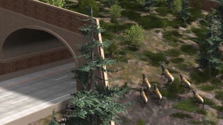 Animal overpasses on I-90 will grant safe passage to Washington wildlife