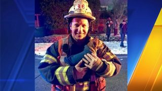 Seattle firefighters rescue chihuahua after high-speed chase through Maple Leaf
