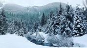 Image: Mountain snow in the cascades via KIRO 7 file