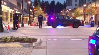 Police: Driver in custody after 2 pedestrians hit in Bothell