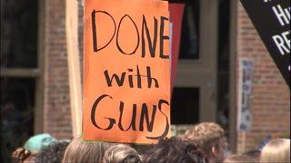 Alliance for Gun Responsibility announces ballot initiative for 2018