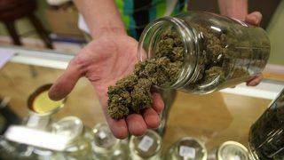 Women look to make mark on male-dominated marijuana industry