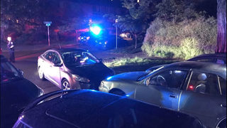 Seattle police searching for armed carjacking suspects