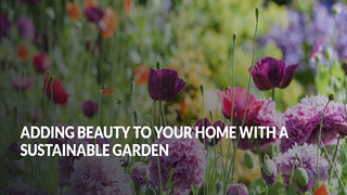 Adding Beauty to Your Home with a Sustainable Garden