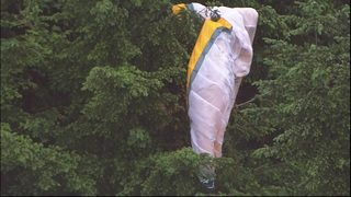 Hang glider stuck in trees on Tiger Mountain