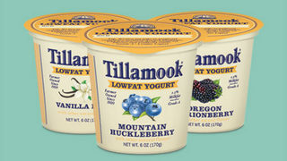 Tillamook opens new, improved creamery to visitors on Oregon coast