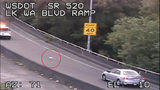 RAW VIDEO: Dog on 520 leads troopers on crazy chase