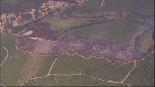 Photos show damage from fires deemed
