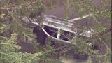 Suspect causes crash, runs into woods near Nisqually
