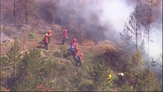Wildland fire investigators use many tools to find cause