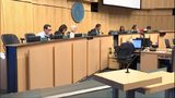 VIDEO: Bill of rights for domestic workers passed by Seattle City Council