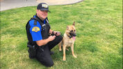 Trooper Scott Keffeler is a 17 year veteran of WSP. Trooper Keffeler has been assigned to the Homeland Security Division, Region 3 in Marysville for the past 13 years. Trooper Keffeler's canine partner is K9  Mia, a Malinois and Shepard mix.