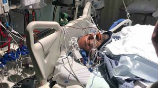 Tumwater Walmart carjacking victim speaks from hospital after given little chance to live