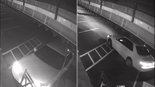 RAW VIDEO: Edmonds pizza burglar, car caught on camera