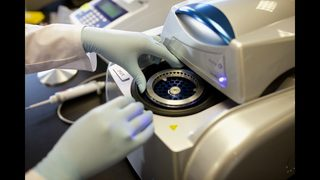 Seattle doctors use high tech to fight 'superbugs