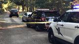 Death investigation underway near Belfair