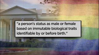 Transgender community reacts to Trump proposal to redefine gender