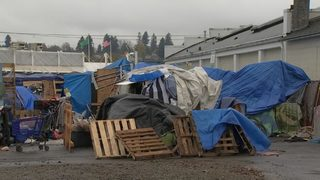 Homeless population in downtown Olympia skyrockets