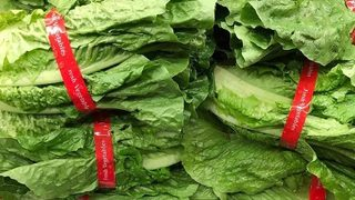 Romaine lettuce not safe to eat: CDC, FDA issue warnings ahead of Thanksgiving