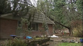 Windstorm cleanup ramps up Monday
